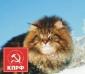 Изображение пользователя Юрий Алексеевич.